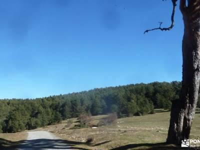 Calzada Romana - Fuenfría; sierra de madrid senderismo viajes abril rutas por la sierra rutas madri